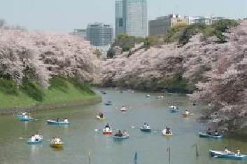 TOKYO定番観光バスツアー