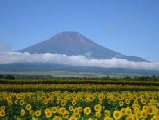 富士の湖めぐり旅